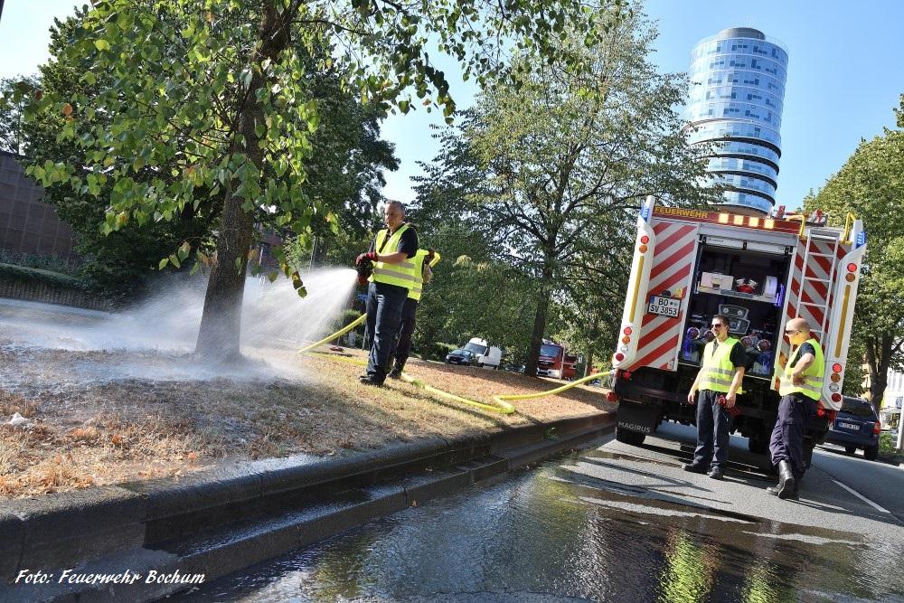 Feuerwehr bewässert Bäume