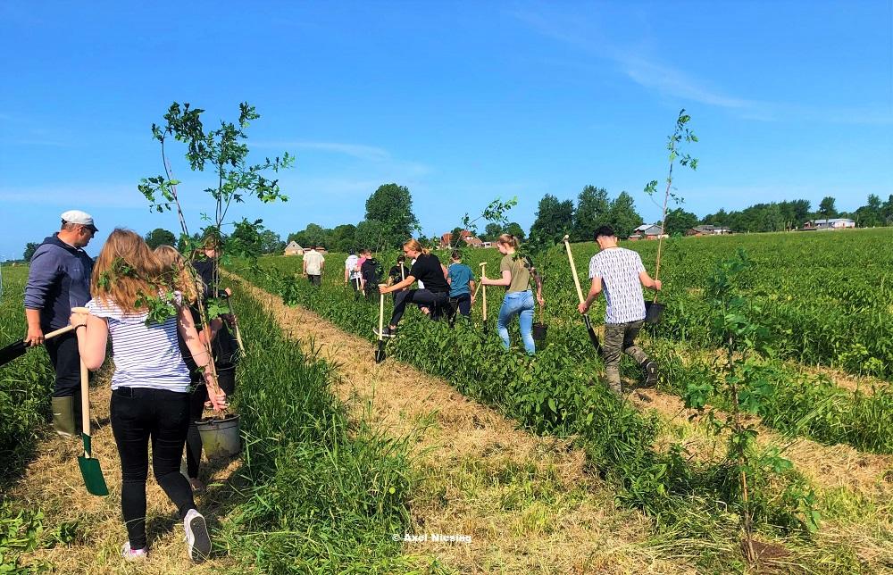 """""""Generation Greta"""" pflanzt Wald in Dithmarschen"""